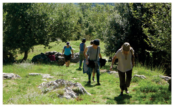 Group tour walking a challenging uplhill trail to Montefollonico
