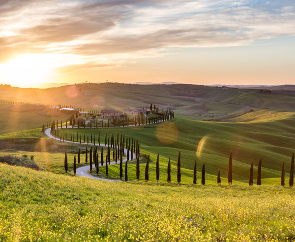 Visit this beautiful section of Tuscany